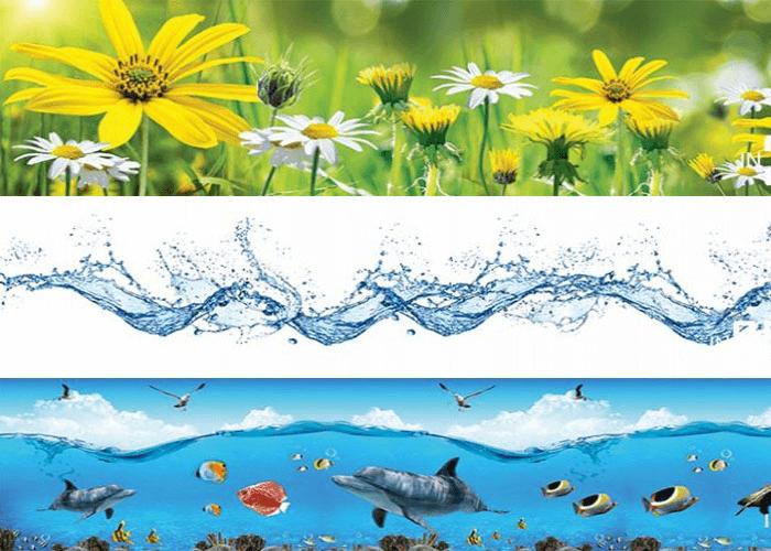 Kính ốp bếp hoa cúc, họa tiết và cảnh biển